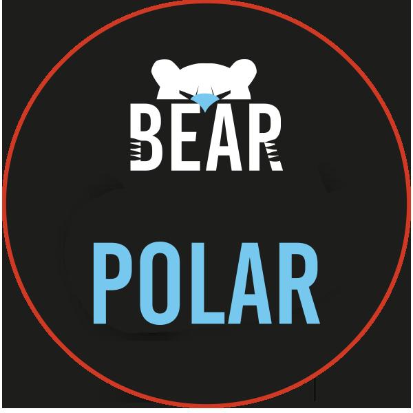 Bear - Polar